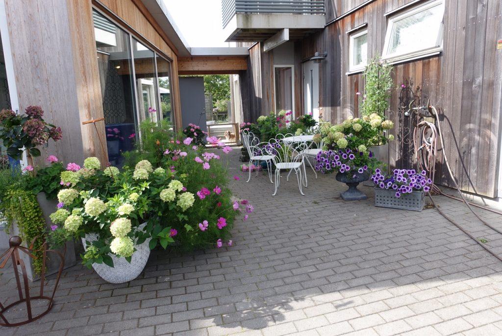 Min krukträdgård