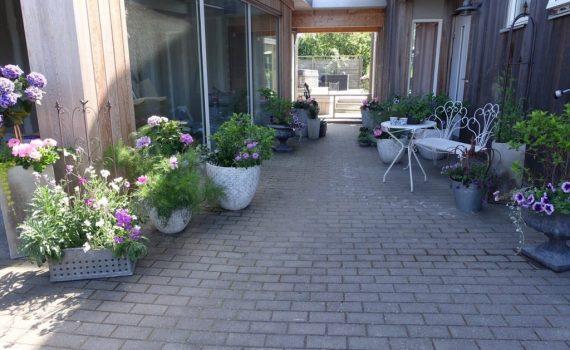 Hur man skapar sin egen krukträdgård