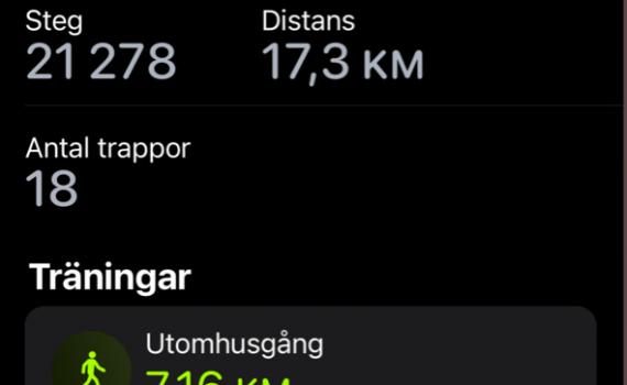 I går gick jag över 21000 steg totalt