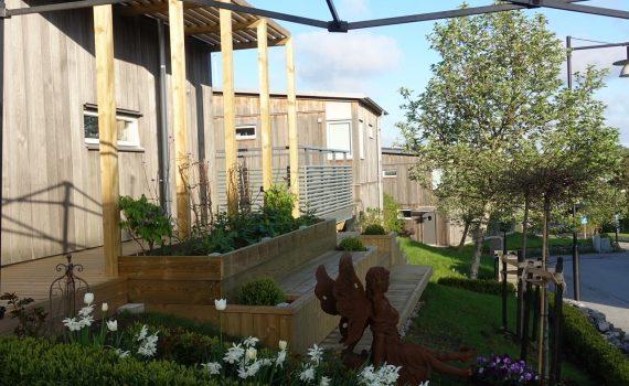Nu börjar det bli grönt i min trädgård