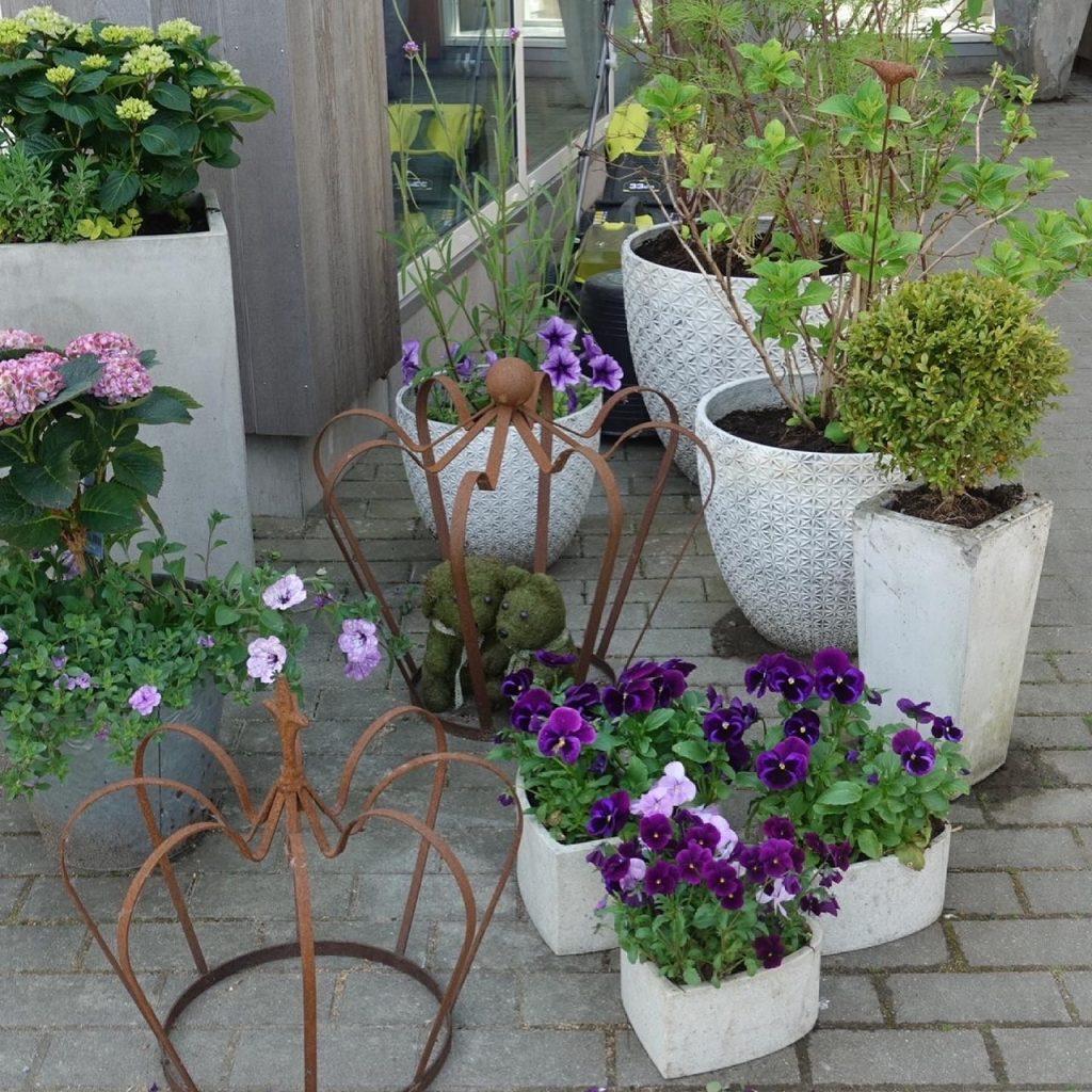 Min lilla krukträdgård