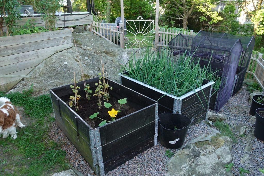 Köra grus till min köksträdgård