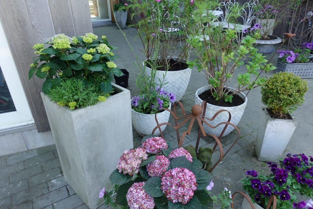Krukträdgård hos PrettyHomeblog