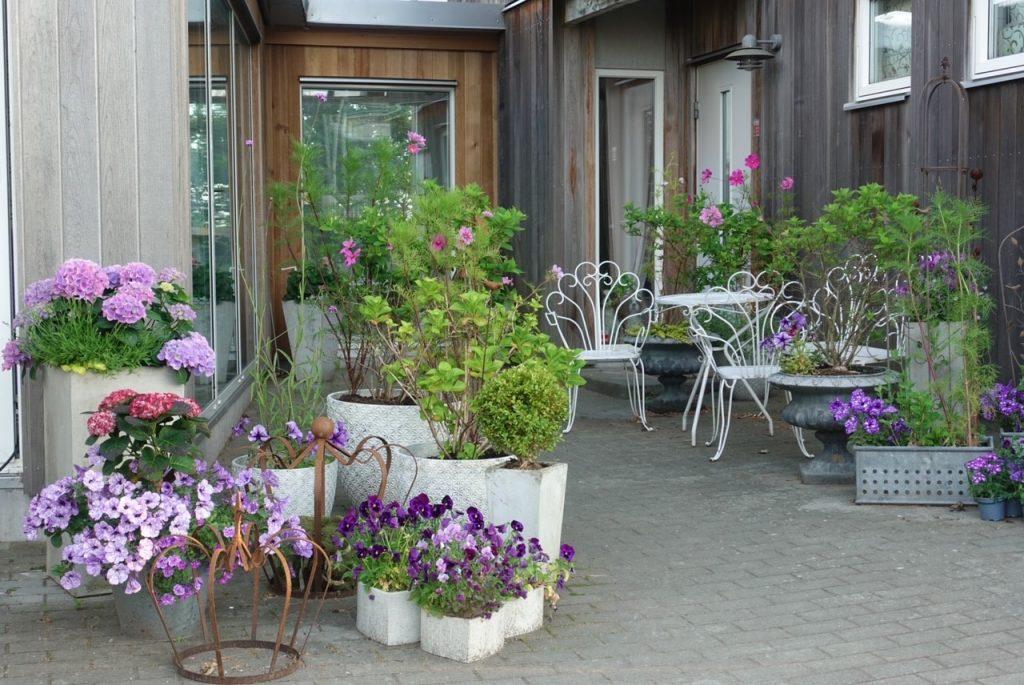 Krukträdgården på midsommarafton