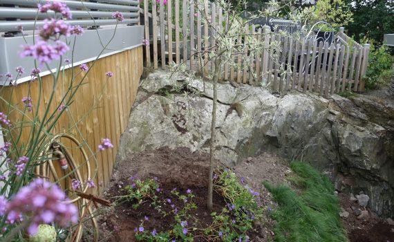 Nu har jag gjort klart en hörna i trädgården